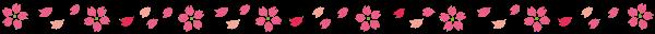 ライン 桜4