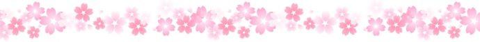 ライン 桜16