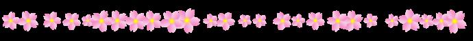 ライン 桜10